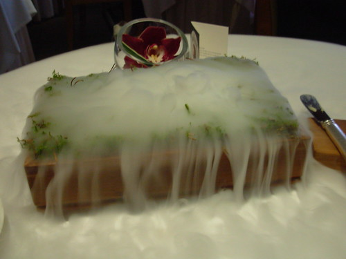 The Fat Duck: Steaming Oak Moss