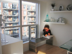 A kept monkey (Jen44) Tags: toronto ontario canada home window modern bench monkey doll interiors apartment julia interior plate condo stuffedanimal plates collectible decor amici condominium collectibles monchhichi unit freeloader kingwest fornasetti homeinteriors pierrefornasetti amicibench