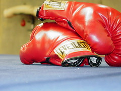 Boxing Gloves by KWDesigns