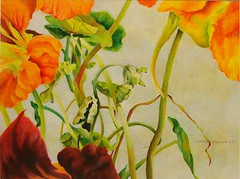 Nasturtiums II (Prismacolor Pencil) (gossamerpromise) Tags: flowers abstract art pencil drawing prismacolor coloredpencil nasturtiums