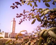 Mosquée Milli