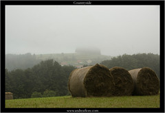 countryside (andrEtna - Andrea Fiore) Tags: fog country campagna nebbia italians balle fieno challengeyouwinner