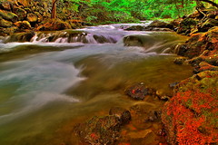silent water runs deep (hdr) (Maki_C30D) Tags: autumn river hdr naturesfinest  yamanashiprefecture anawesomeshot diamondclassphotographer