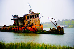 [フリー画像] 乗り物, 船・船舶, 廃船, アメリカ合衆国, 201005170500