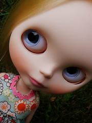 Sweet Ellery Oleander - 349/365 ADAD - 25/52 WB