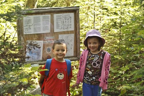 Willoughby Bog Hike (4)
