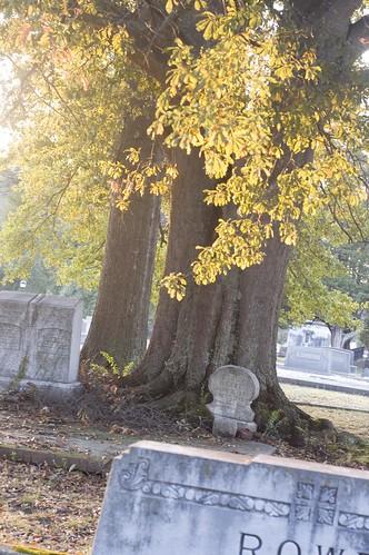cemetery_0004