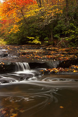 Simply Elegant (Brent McGuirt Photography) Tags: new west color water leaves river virginia waterfall branch gorge cascade marr