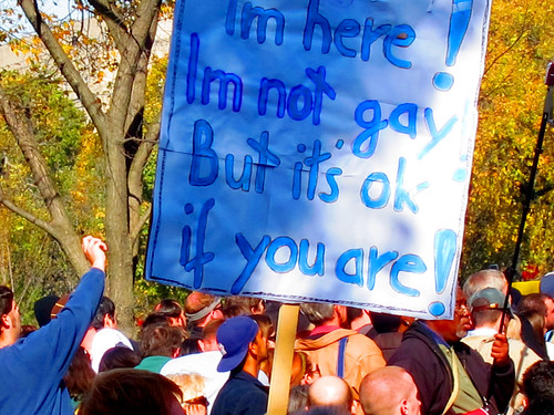 I'm Here! I'm Not Gay! But It's Okay It You Are!