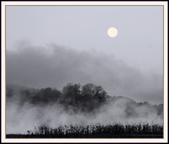 Morning Moon over Mist #2 (Cliff Michaels) Tags: morning trees moon mist field fog photoshop d50 river landscape dawn nikon knoxville farm tennessee knoxcounty capturenx