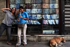 At least the dog was still sleeping!!!! (lecercle) Tags: india june fun neha rickshaw calcutta shez sudderstreet rickshawrun