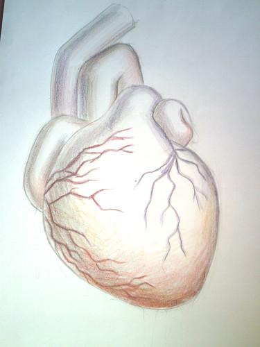 inima