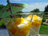 bril-tropical_mango_treatsm