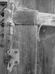 (Photostudent) Tags: old fence spider gate lock web rope cobweb canonpowershots2is photostudent