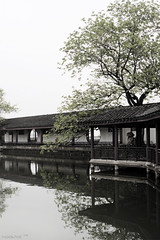 (hsalnat) Tags: china park flower nature garden pond wuxi   liyuan   peachflower