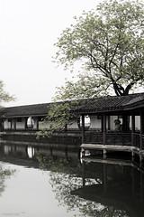 (hsalnat) Tags: china park flower nature garden pond wuxi   liyuan   peachflower