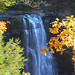 Salmon River Falls Fall