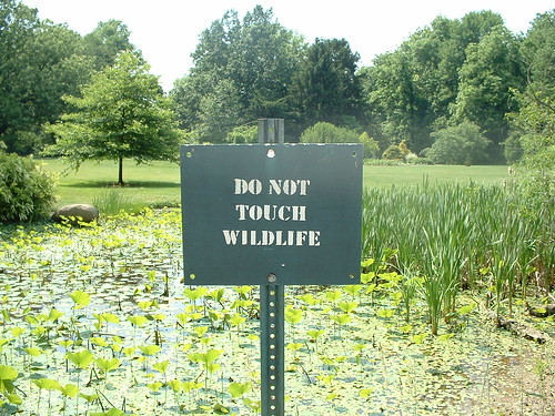 Do Not Touch Wildlife