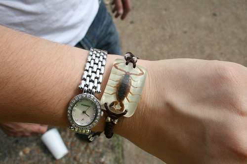 my $5 scorpion bracelet