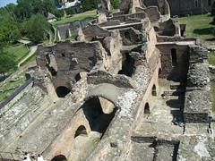 Cetatea domneasca