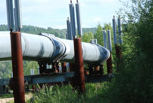 Trans-Alaskan Pipeline - 19