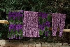 DSC_1082_laundry (kdriese) Tags: china xinjiang tuyuguo laundry purple turpan turfan silkroad kendriese nikond200 may2007 taklamakan muslim uighur