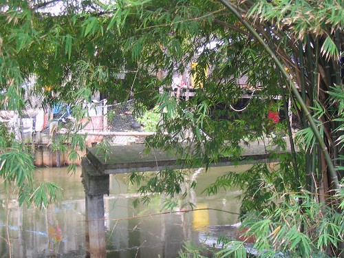 Pathway on Klong Song Hong