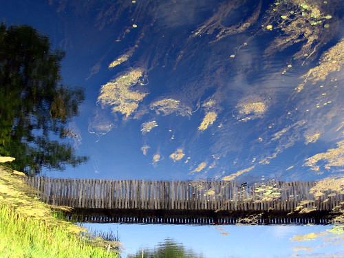 Wooden bridge over green clouds