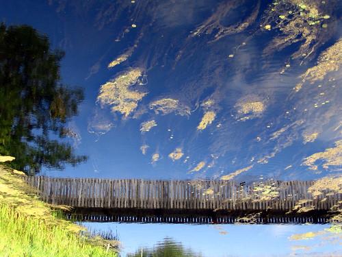 Wooden bridge over green clouds