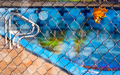 closed for the season (marianna a.) Tags: blue autumn light red canada colour macro green fall pool yellow swimming fence gold leaf trapped interesting wire closed stuck mesh quebec bokeh montreal vibrant branches panasonic hanging suspended friday fenced hung barred eplore explored lumixg1 mariannaarmata
