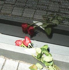 Roses at the foot of the Vietnam Veterans Memorial