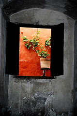 Monastery window, Arequipa, Peru (flower_bee) Tags: travel flowers fab peru window architecture pot trip2001 santacatalinamonastery lpwindows