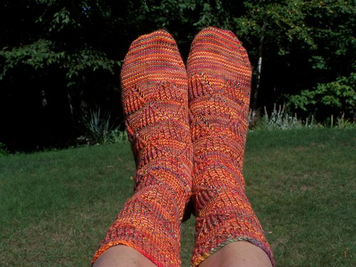 Pheasant Run Socks pair