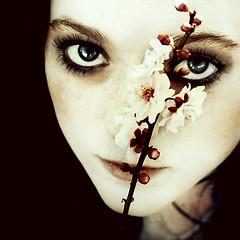 squared (Lá caitlin) Tags: portrait cherryblossom jayde