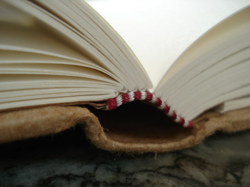 a close up of an open book, side view