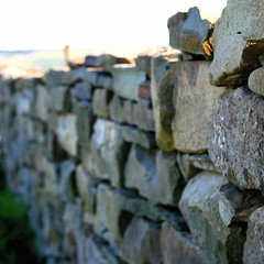 walls of ireland or ireland of walls (limerickdoyle) Tags: ireland countryside ef28135mm stonewalls countyclare canon400d anawesomeshot irishscene irishwalls