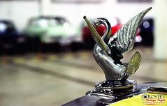 Volkswagen MP Lafer 1979 (Rostev) Tags: film car brasil 35mm volkswagen nikon sopaulo sp carro filme cruzeiro exposio fujicolor conversvel nikonfm valedoparaba pro800z mplafer rostev rodrigoteofilo centroculturalrotunda tamronaf2875mmf28 hpscanjetg4050 expossante 2expossante