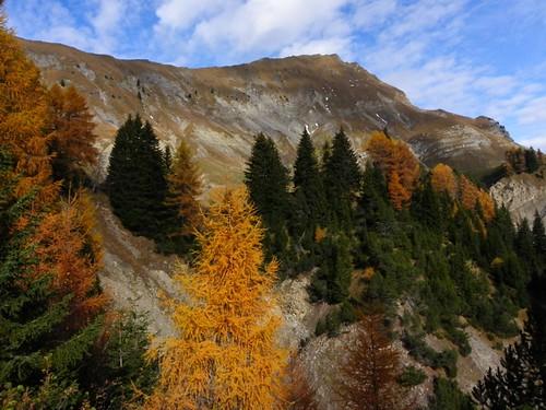 Paysage d'automne Route des montagnes Ugine