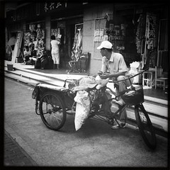 shanghai old chinese town (stefo) Tags: china bw film bike shanghai chinese squared cina iphone shanghaioldtown hipstamatic