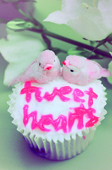 Tweethearts (boopsie.daisy) Tags: pink flowers cute love birds yummy pretty sweet adorable cupcake precious messy icing lovebirds sweethearts birdies chirp sloppy tweet