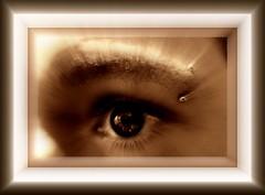 eye shot closeup of perice