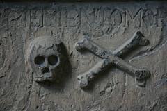 Skull and Crossbones!