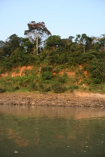 Tambopata River, Peru