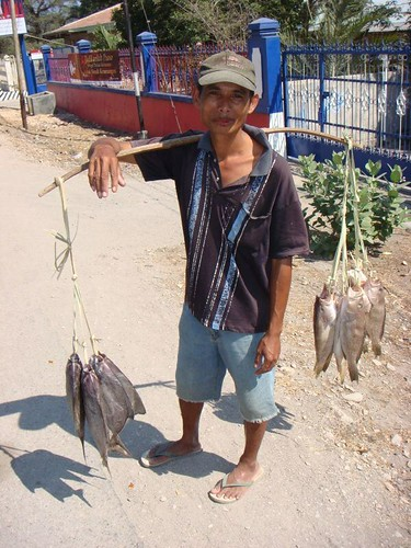 Local fisherman, Kupang, Timor.