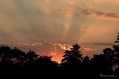 Gold edges (atranswe) Tags: sunset fab sweden sverige beams peopleschoice falkenberg naturesfinest supershot strlar dsc2461 abigfave solnergng flickrgold worldbest nikond40 anawesomeshot diamondclassphotographer todaysbestaward flickrelite bestnatureshots mykindofpicturegallery theperfectphotographer atranswe 2070924