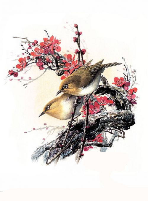 1474341909 1f3df851c3 o - cute bird paintings