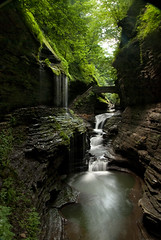 Watkins Glen - Perfect Day, Great Hike (VermontDreams) Tags: ny newyork waterfall falls waterfalls fingerlakes watkinsglen watkinsglenstatepark wnywaterfallers watkinsglencreek