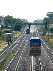 on shiny rails (sth475) Tags: railroad train diesel railway loco australia nsw locomotive hunter coal fc signal edi freight cr pn huntervalley gantry endeavour tarro emd 9010 90class quadtracks te2804 atranz