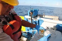 Deepwater Horizon Oil Spill - FSU Sampling Cruise - June 23, 2010 (SkyTruth) Tags: gulfofmexico bp oilspill offshoredrilling transocean skytruth deepwaterhorizon