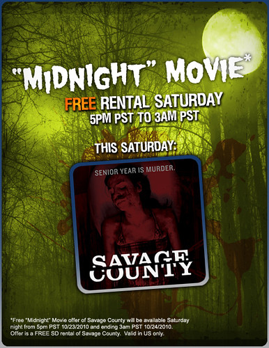 VDS - Savage County Free Rental